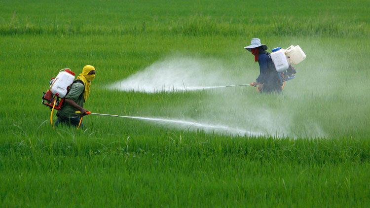 Resultado de imagen de España es el país que más pesticidas consume de toda Europa