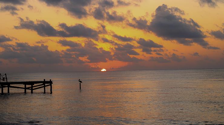 Tienes Paquetes En Cancún 5 Actividades Que No Puedes Dejar