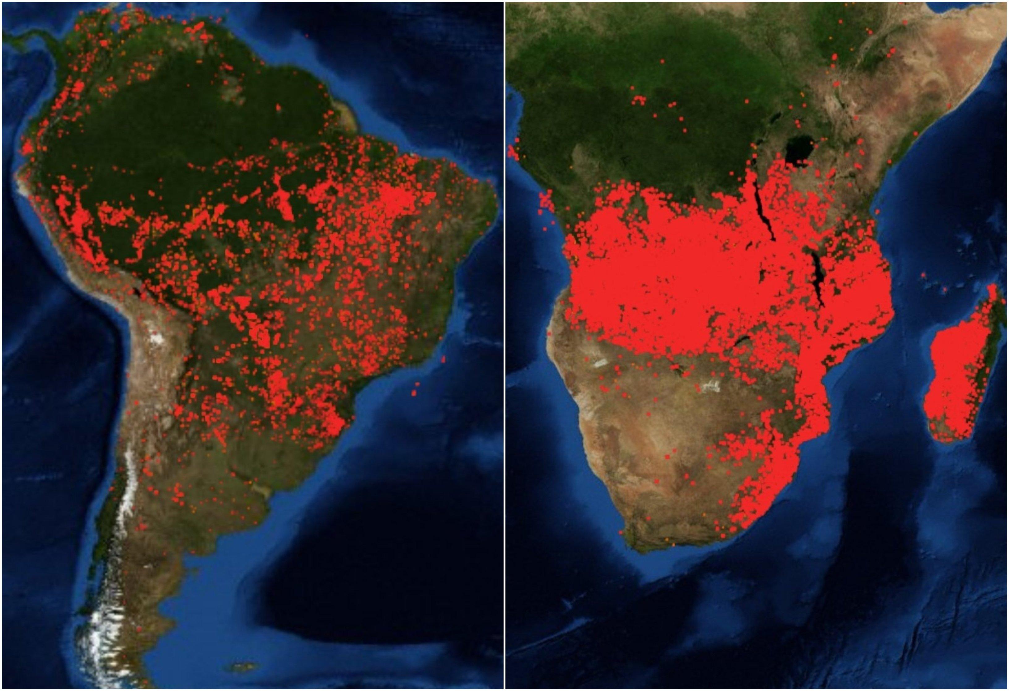 África: El otro 'pulmón verde' del planeta también arde